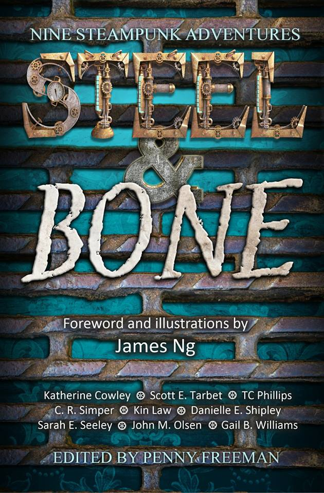 Steel and Bone Revised Cover
